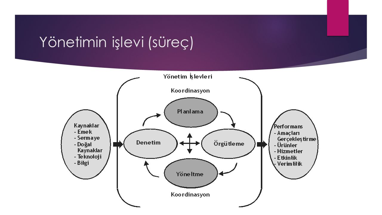 Yönetimin işlevi (süreç)