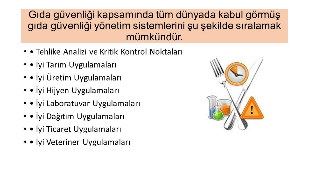 Gıda güvenliği kapsamında tüm dünyada kabul görmüş gıda güvenliği yönetim sistemlerini şu şekilde sıralamak mümkündür.
