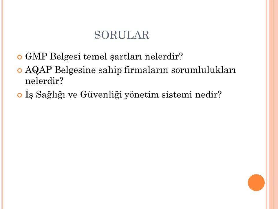 sorular GMP Belgesi temel şartları nelerdir