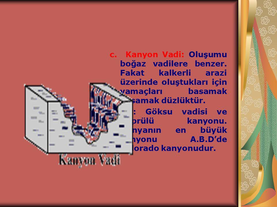 c. Kanyon Vadi: Oluşumu boğaz vadilere benzer