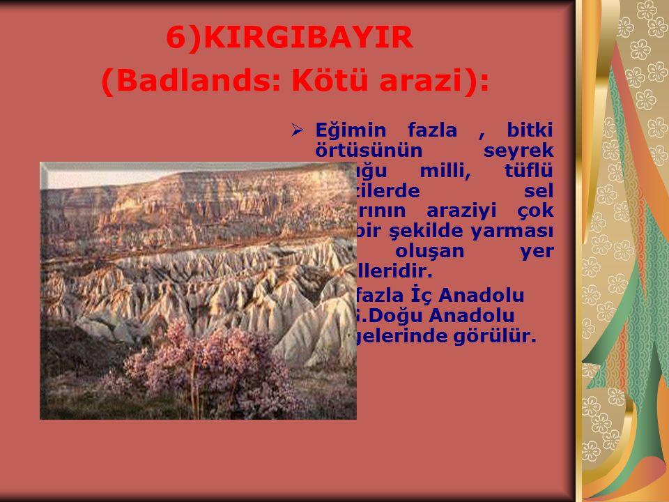 6)KIRGIBAYIR (Badlands: Kötü arazi):