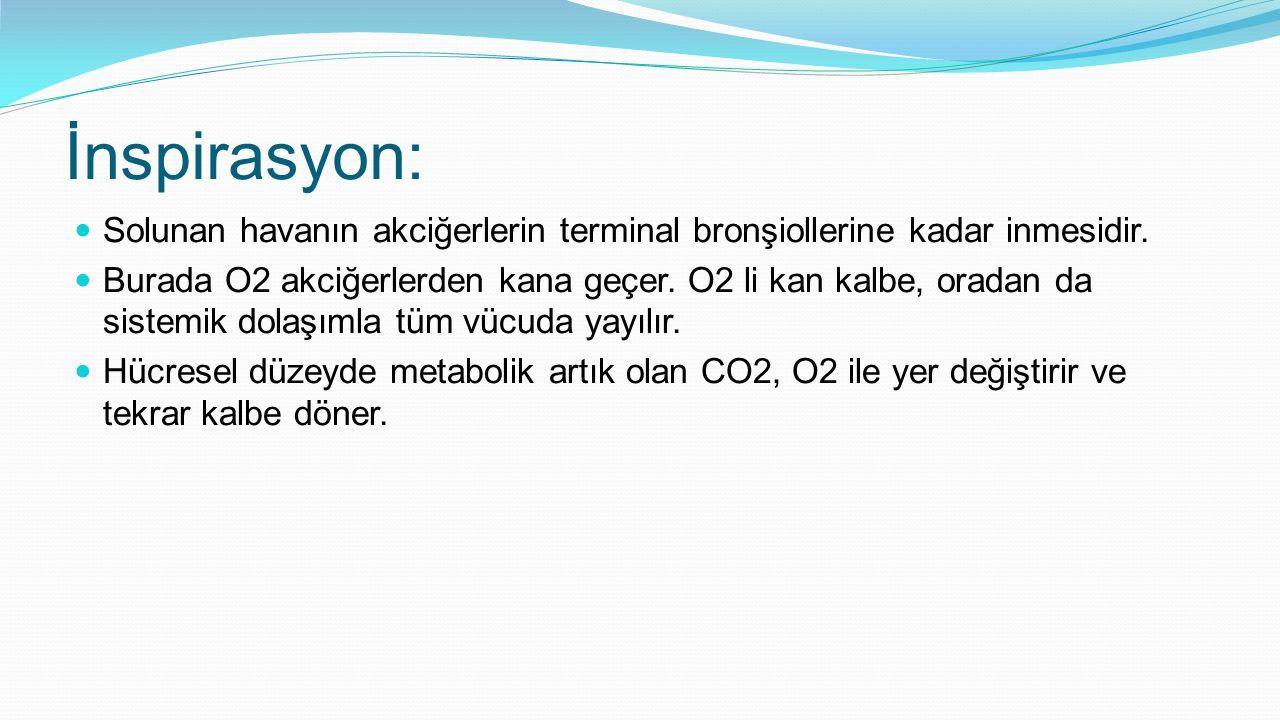 İnspirasyon: Solunan havanın akciğerlerin terminal bronşiollerine kadar inmesidir.