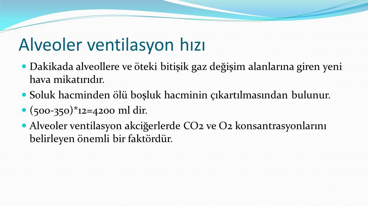 Alveoler ventilasyon hızı
