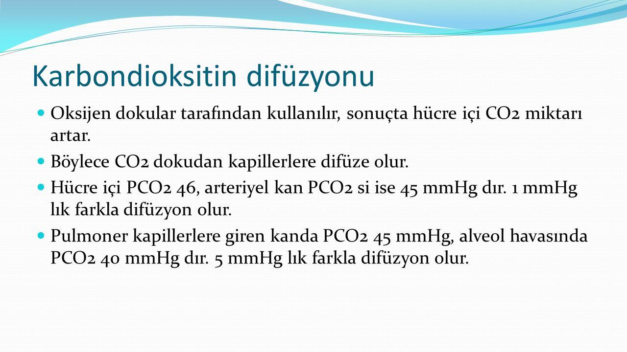 Karbondioksitin difüzyonu