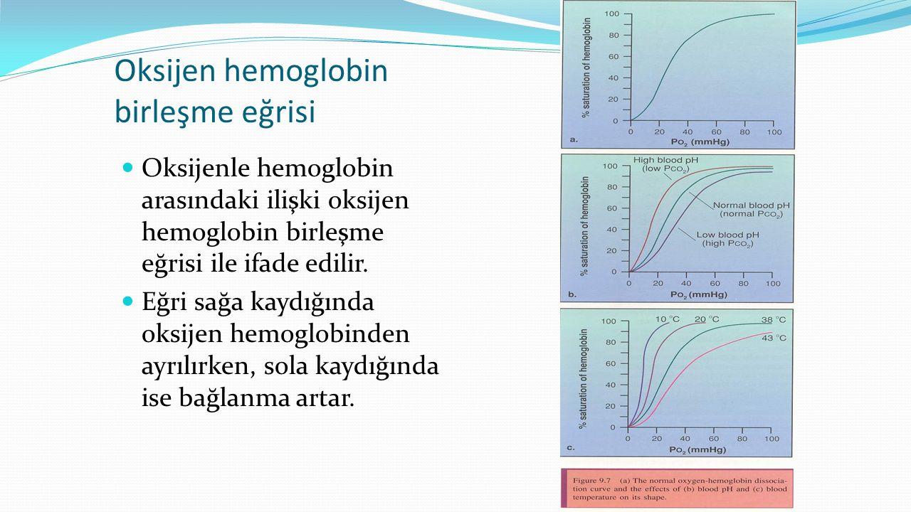 Oksijen hemoglobin birleşme eğrisi
