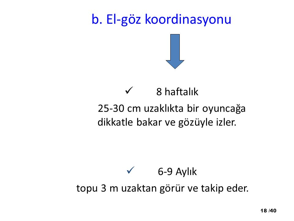 b. El-göz koordinasyonu
