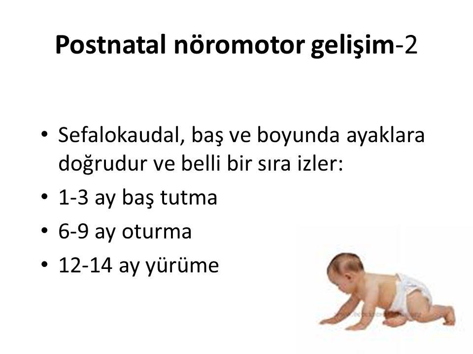 Postnatal nöromotor gelişim-2