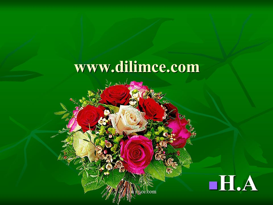 www.dilimce.com H.A www.dilimce.com
