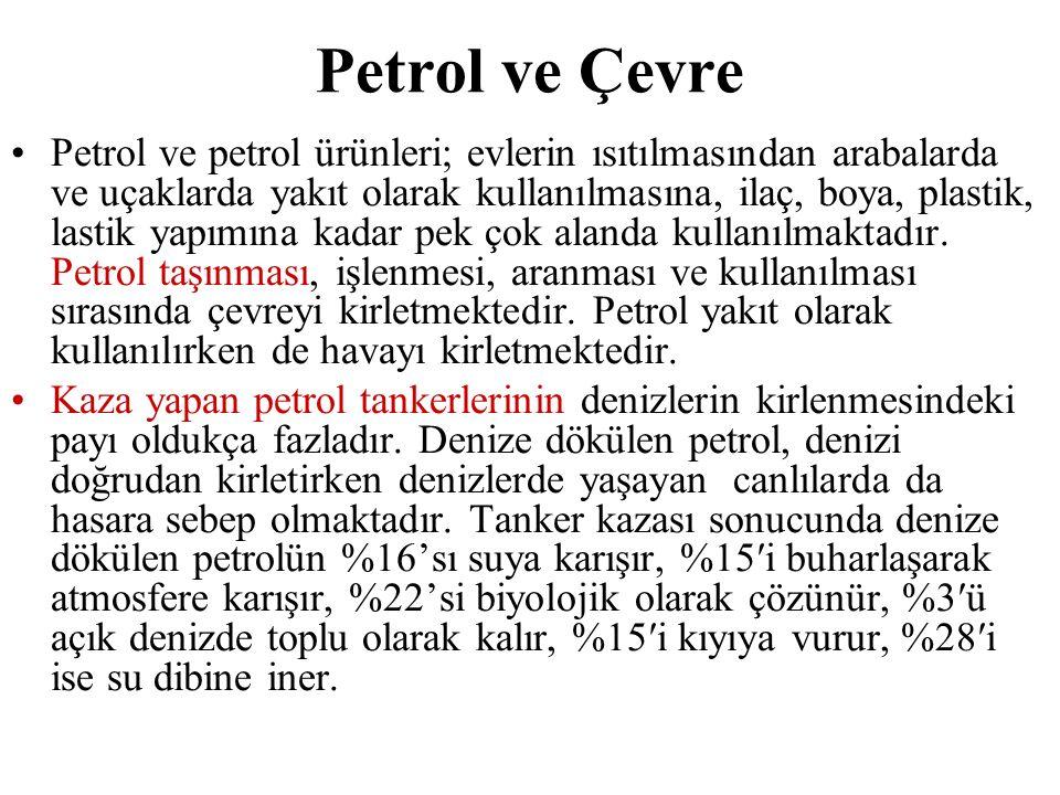 Petrol ve Çevre