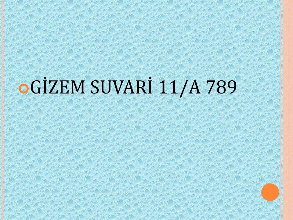 GİZEM SUVARİ 11/A 789