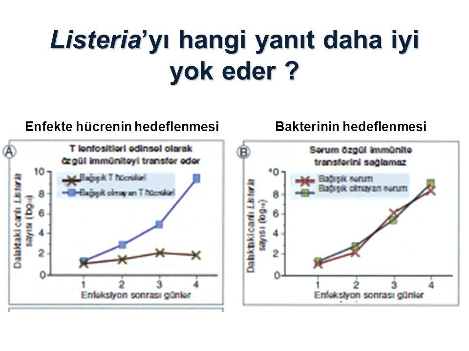 Listeria'yı hangi yanıt daha iyi yok eder