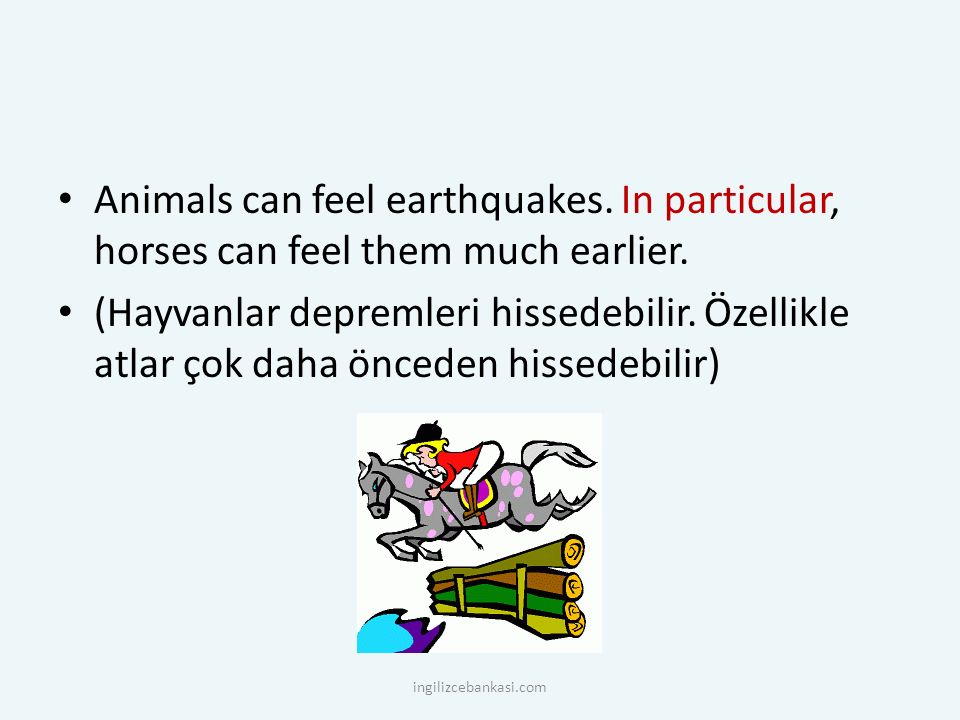 Animals can feel earthquakes