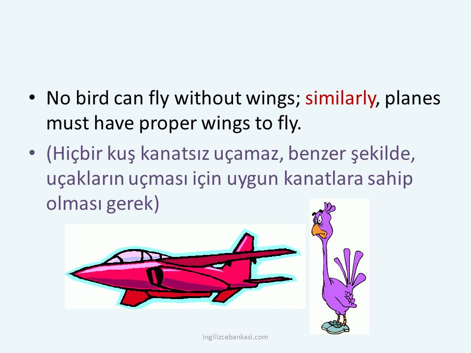 No bird can fly without wings; similarly, planes must have proper wings to fly.