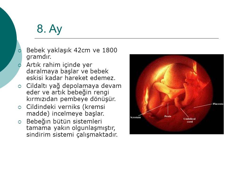 8. Ay Bebek yaklaşık 42cm ve 1800 gramdır.