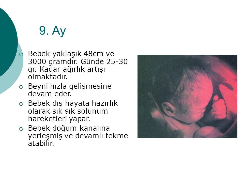 9. Ay Bebek yaklaşık 48cm ve 3000 gramdır. Günde 25-30 gr. Kadar ağırlık artışı olmaktadır. Beyni hızla gelişmesine devam eder.