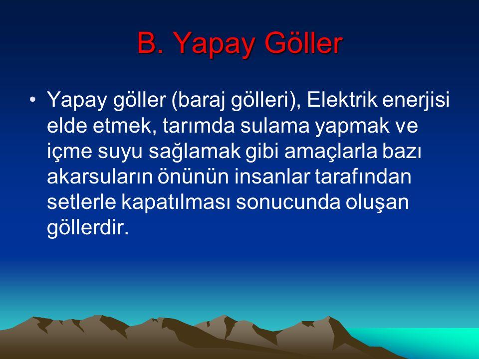 B. Yapay Göller