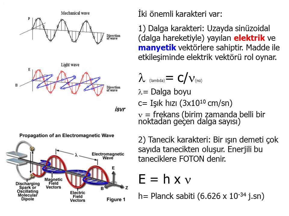 (lambda)= c/(nü) E = h x  İki önemli karakteri var:
