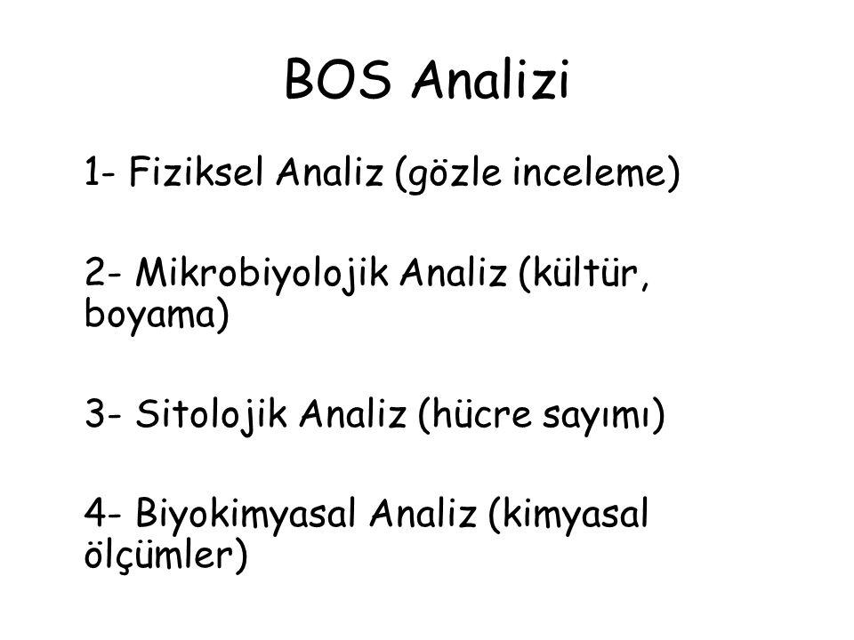 BOS Analizi 1- Fiziksel Analiz (gözle inceleme)