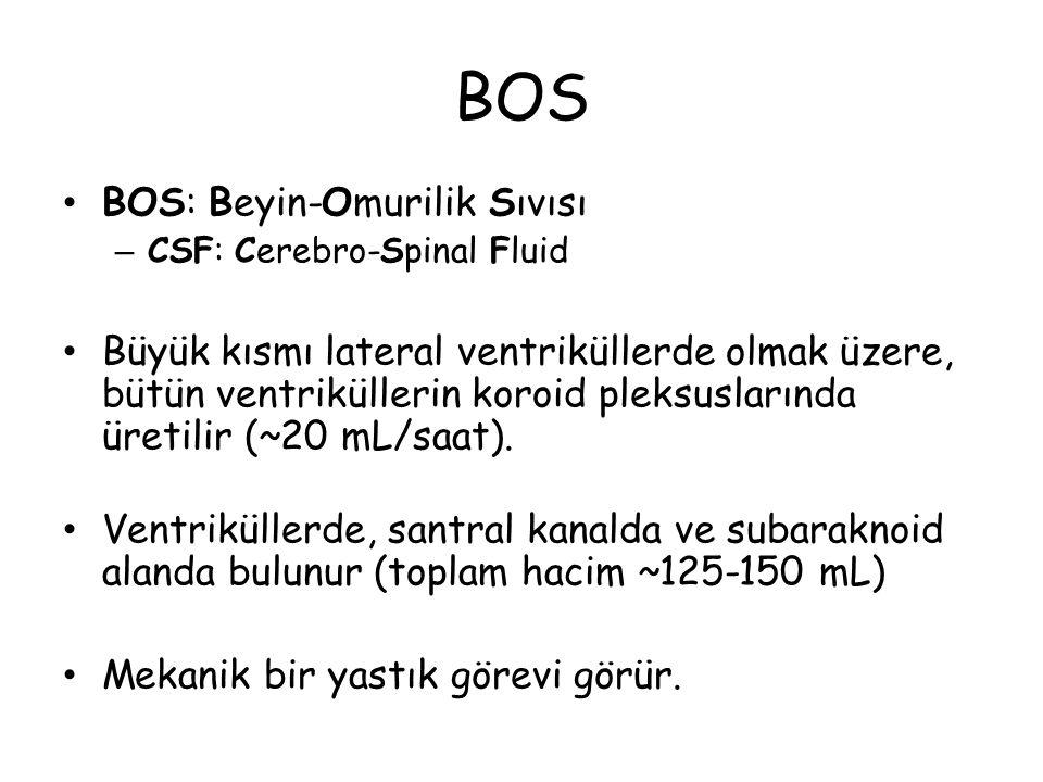 BOS BOS: Beyin-Omurilik Sıvısı