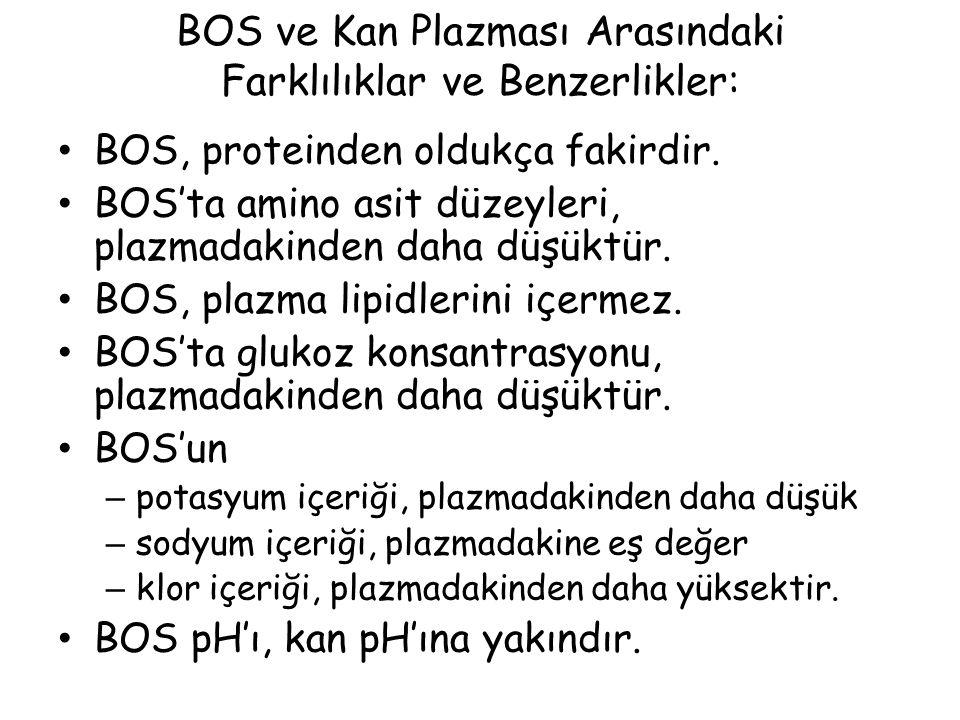 BOS ve Kan Plazması Arasındaki Farklılıklar ve Benzerlikler: