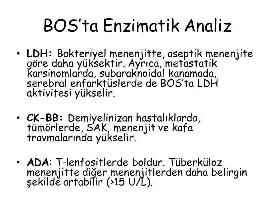 BOS'ta Enzimatik Analiz