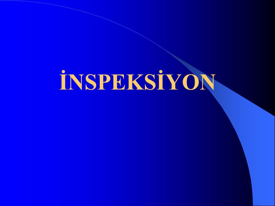 İNSPEKSİYON