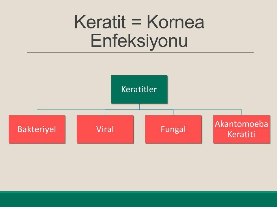 Keratit = Kornea Enfeksiyonu