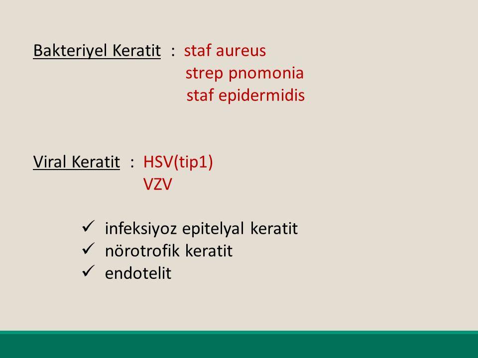 Bakteriyel Keratit : staf aureus