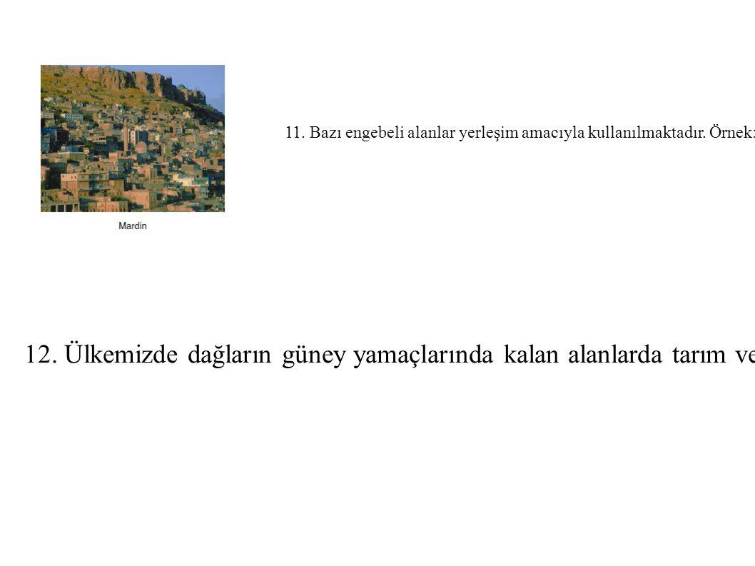 11. Bazı engebeli alanlar yerleşim amacıyla kullanılmaktadır