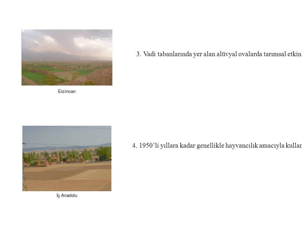 3. Vadi tabanlarında yer alan alüvyal ovalarda tarımsal etkinlikler yoğunlaşmış ve ova ile yamaçlar arasında yerleşim birimleri kurulmuştur. örnek: Antakya, Erzincan, Bursa ovaları.
