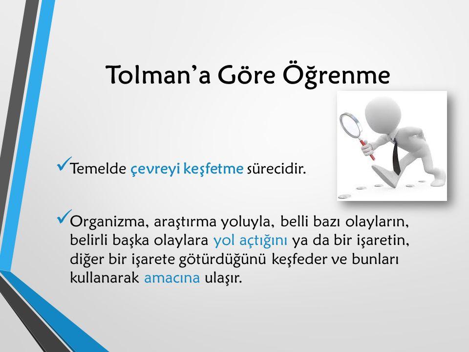 Tolman'a Göre Öğrenme Temelde çevreyi keşfetme sürecidir.