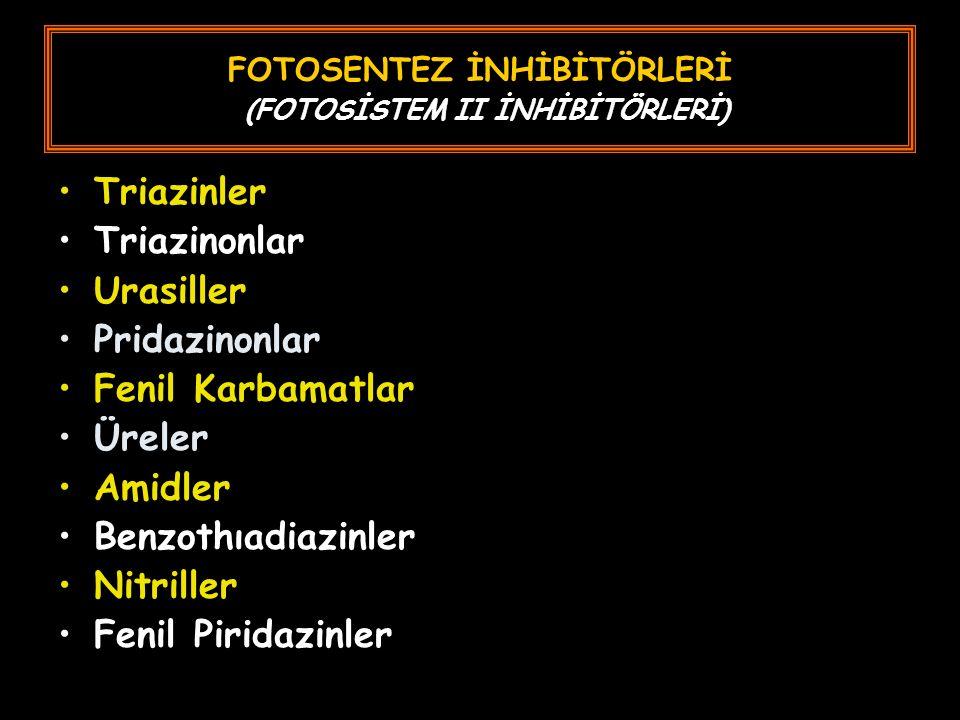 FOTOSENTEZ İNHİBİTÖRLERİ (FOTOSİSTEM II İNHİBİTÖRLERİ)