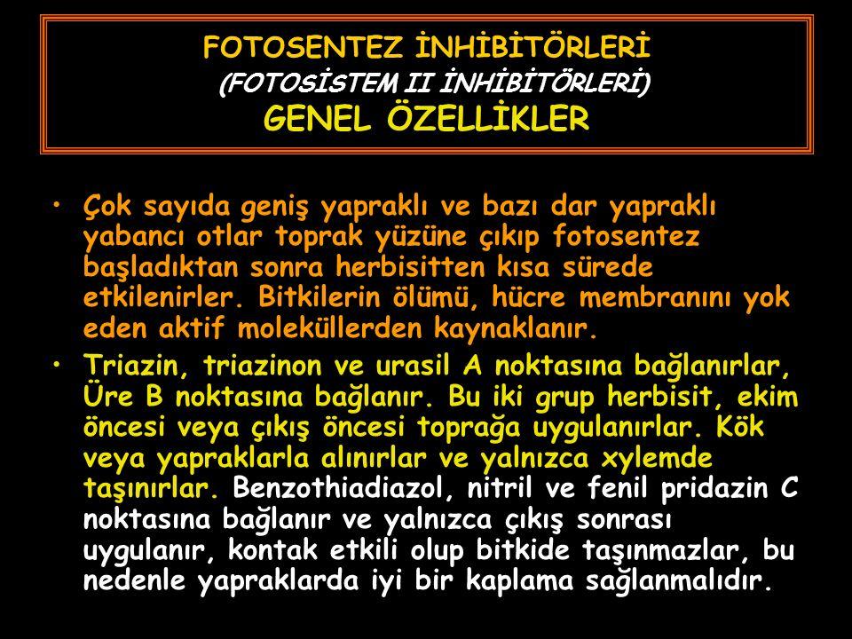 FOTOSENTEZ İNHİBİTÖRLERİ (FOTOSİSTEM II İNHİBİTÖRLERİ) GENEL ÖZELLİKLER