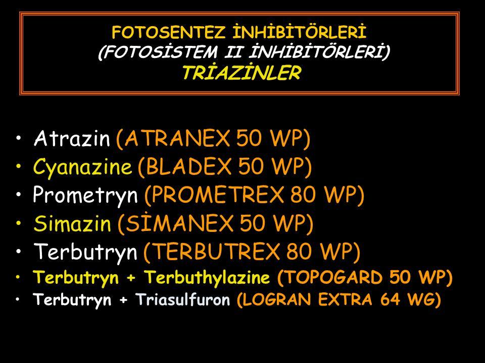 FOTOSENTEZ İNHİBİTÖRLERİ (FOTOSİSTEM II İNHİBİTÖRLERİ) TRİAZİNLER