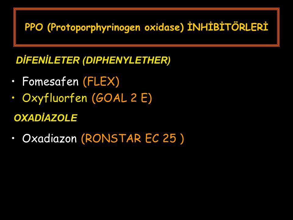 PPO (Protoporphyrinogen oxidase) İNHİBİTÖRLERİ