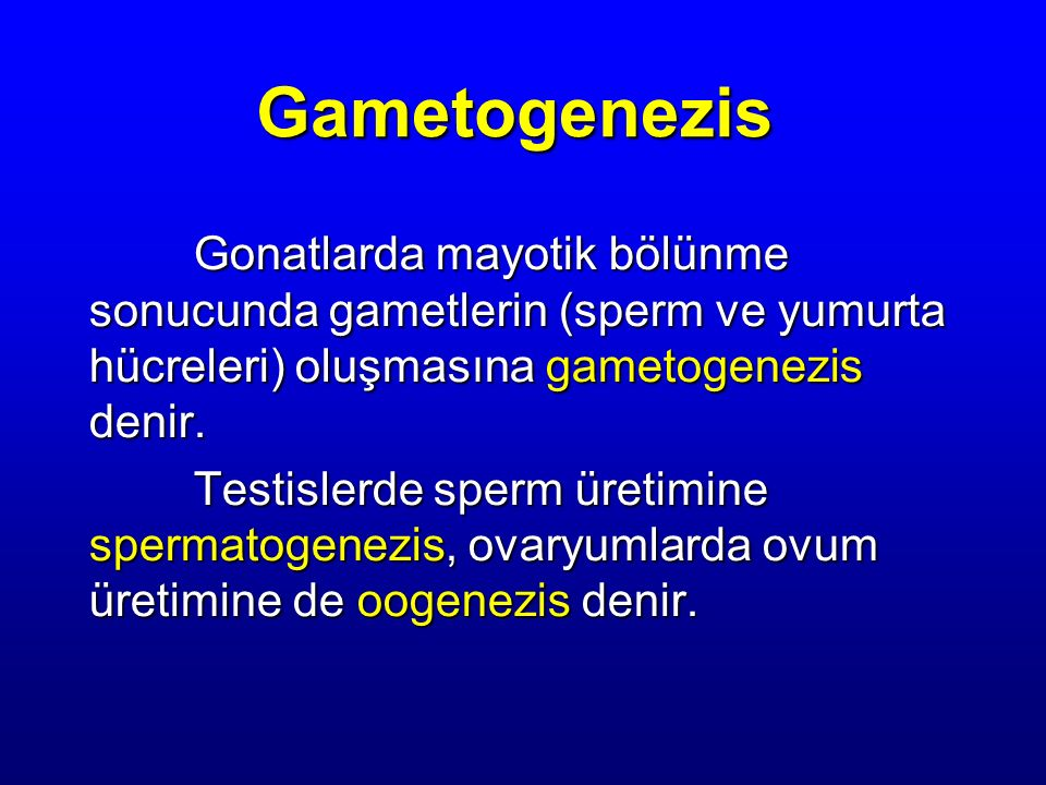 Gametogenezis Gonatlarda mayotik bölünme sonucunda gametlerin (sperm ve yumurta hücreleri) oluşmasına gametogenezis denir.