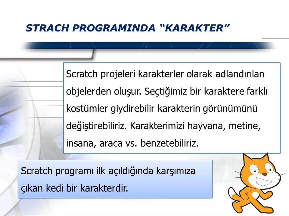 STRACH PROGRAMINDA KARAKTER