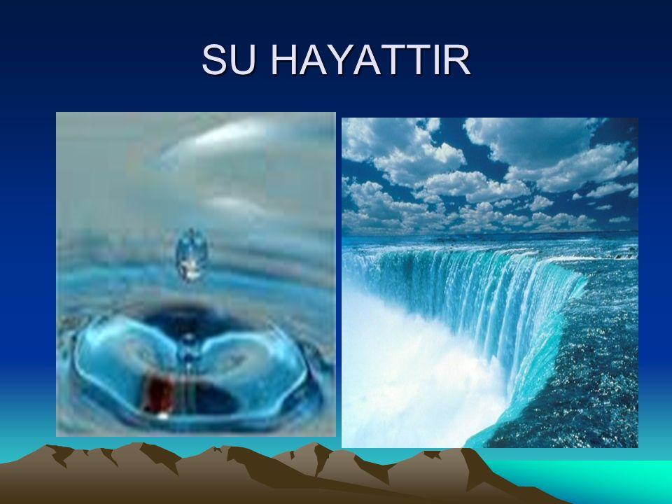 SU HAYATTIR
