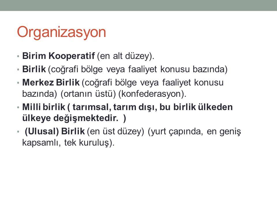 Organizasyon Birim Kooperatif (en alt düzey).