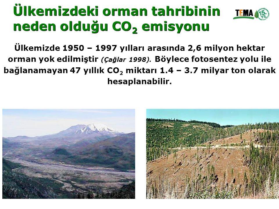 Ülkemizdeki orman tahribinin neden olduğu CO2 emisyonu