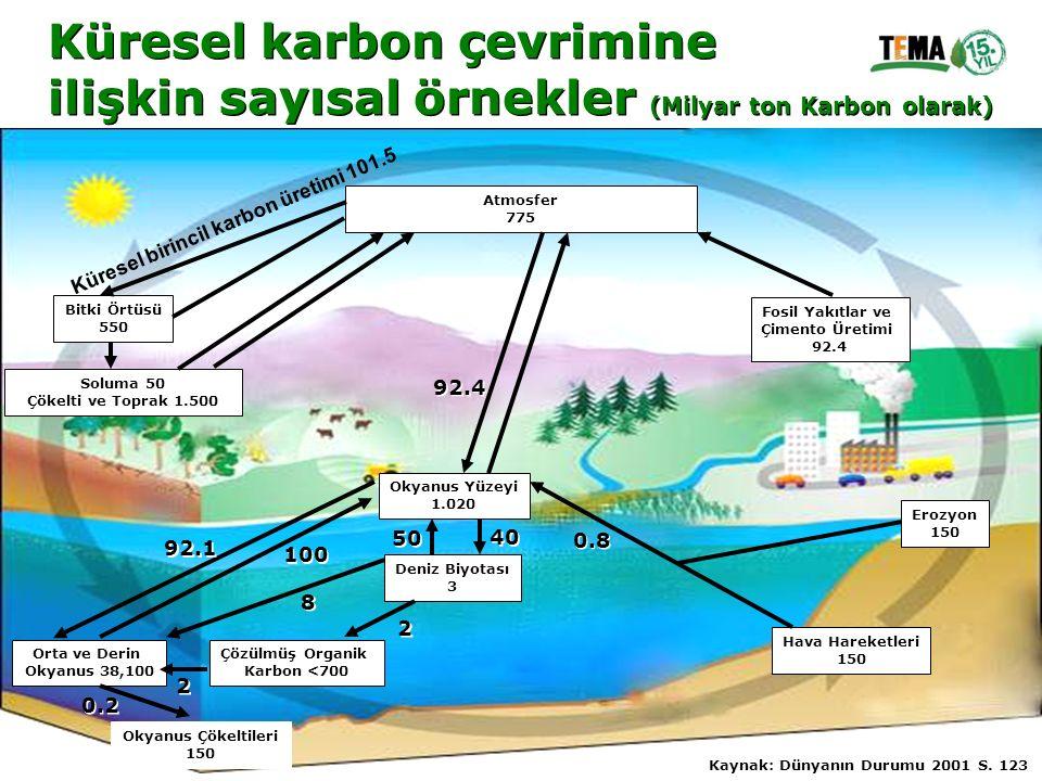 Küresel karbon çevrimine