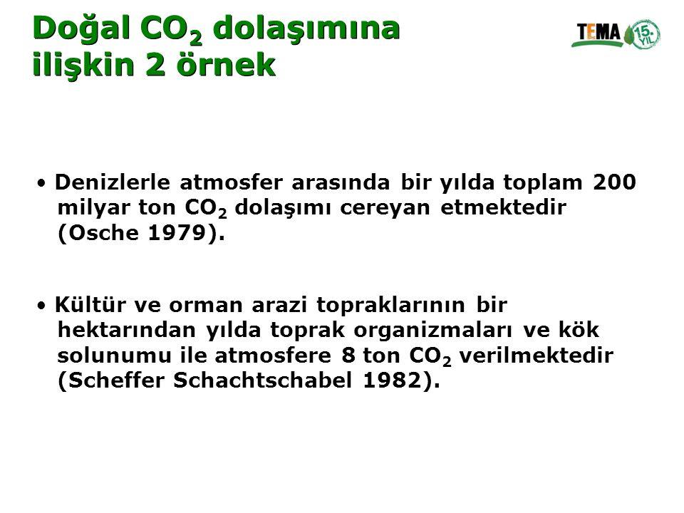 Doğal CO2 dolaşımına ilişkin 2 örnek