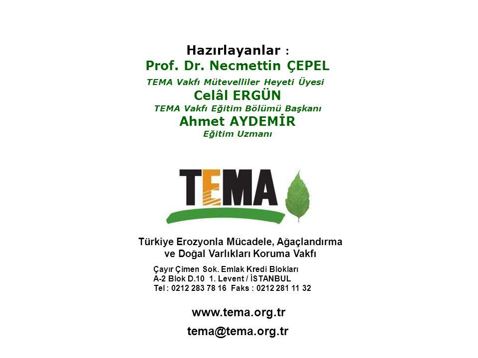 Prof. Dr. Necmettin ÇEPEL Celâl ERGÜN Ahmet AYDEMİR
