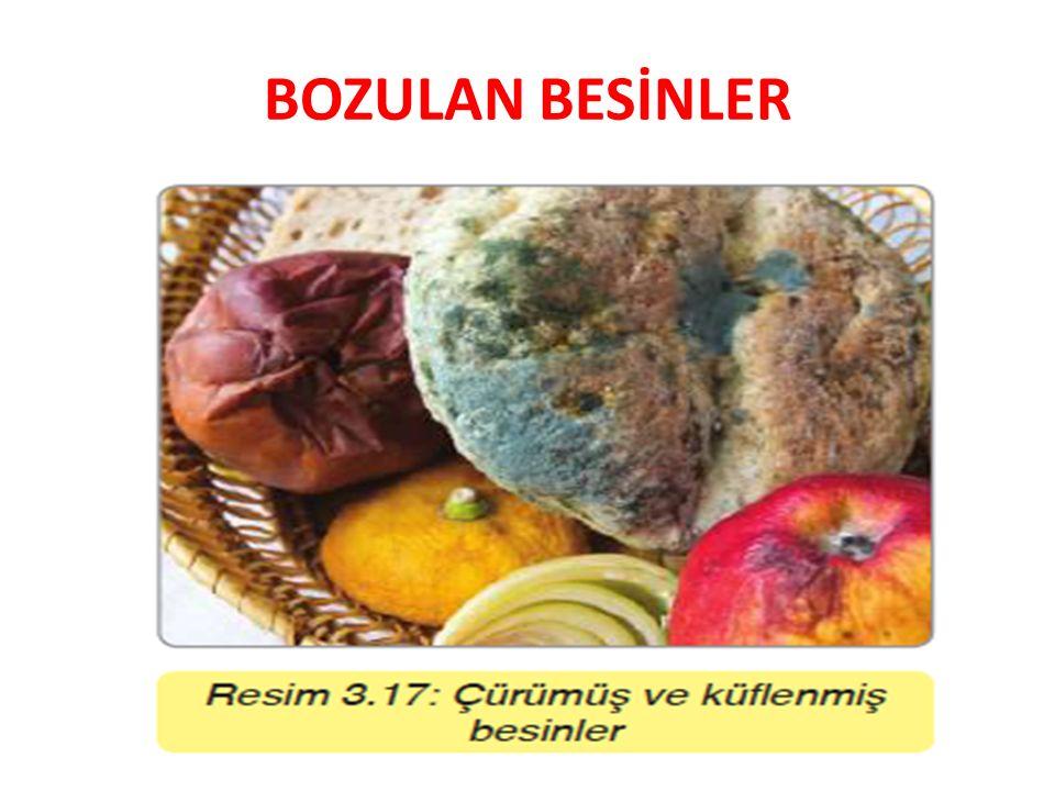 BOZULAN BESİNLER