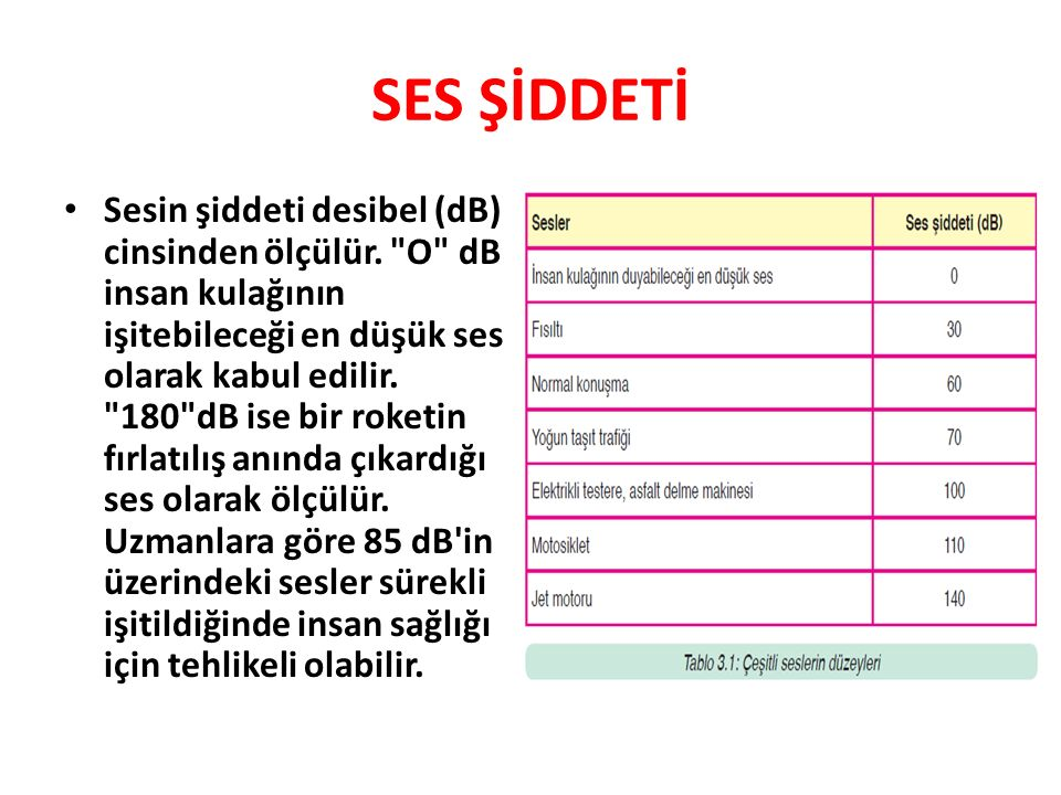 SES ŞİDDETİ
