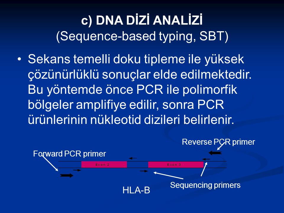 c) DNA DİZİ ANALİZİ (Sequence-based typing, SBT)