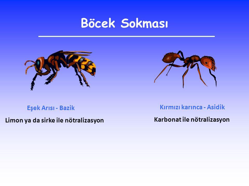 Böcek Sokması Eşek Arısı - Bazik Kırmızı karınca - Asidik