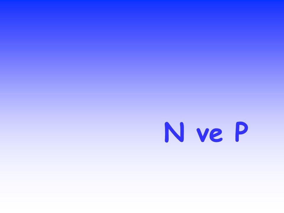 N ve P