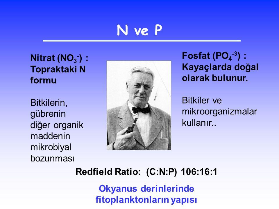 N ve P Fosfat (PO4-3) : Nitrat (NO3-) : Topraktaki N formu