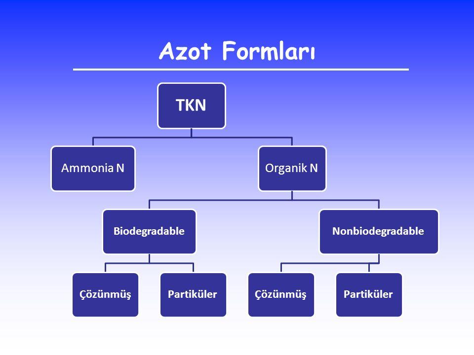 Azot Formları TKN Ammonia N Organik N Biodegradable Çözünmüş